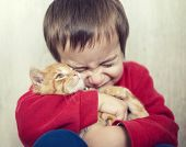 image of kitty  - Portrait of child holding yellow kitty cat - JPG