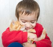 picture of kitty  - Portrait of child holding yellow kitty cat - JPG