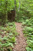 stock photo of porta-potties  - An old outhouse on the trail through the woods - JPG