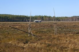 pic of marshlands  - View of a marshland in autumn - JPG