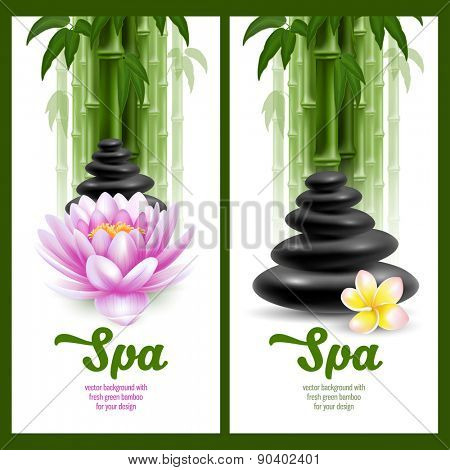 Vector banners on spa theme with bamboo, massage stone, frangipani and lotus