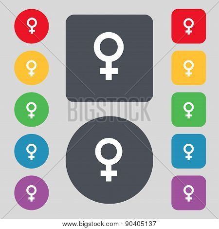 Symbols Gender, Female, Woman Sex Icon Sign. A Set Of 12 Colored Buttons. Flat Design. Vector