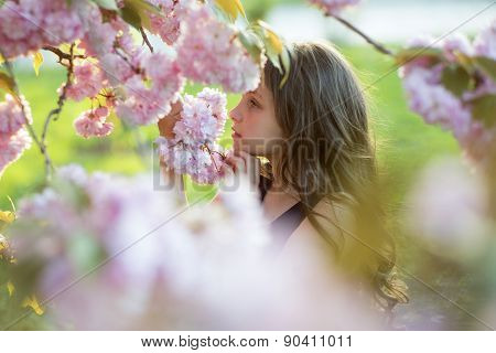 Cute Girl Amid Cherry Blossom