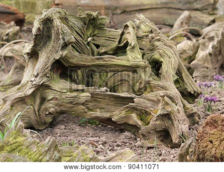 Weathered Driftwood.