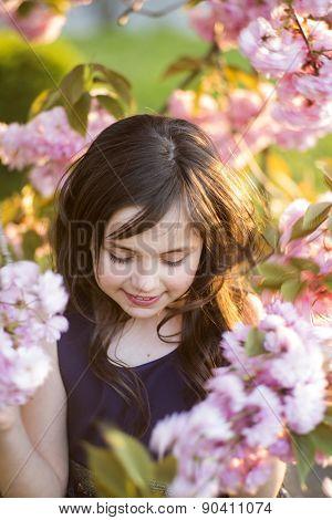 Small Girl Amid Cherry Bloom