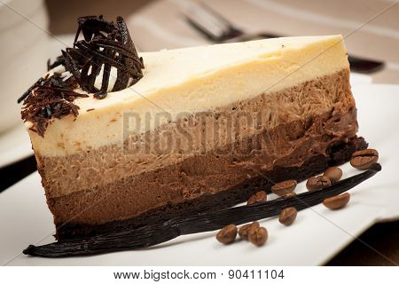 Slice of cocolate and vanilla mousse cake