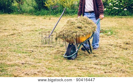 Senior man carrying wheelbarrow with hay on field