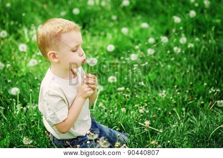 Adorable Little Boy Blowing On A Dandelion On A Green Spring Meadow
