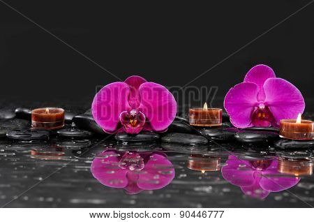 Red two orchid with candle and therapy stones