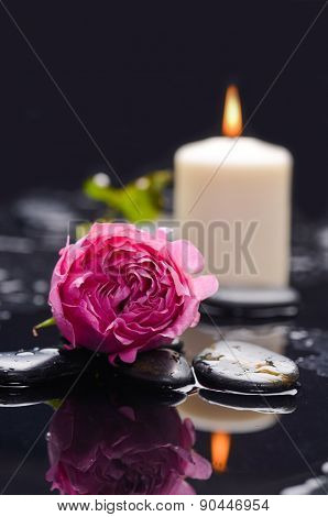 Red rose ,candle and wet stones