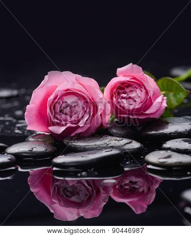 Still life with two rose and wet stones