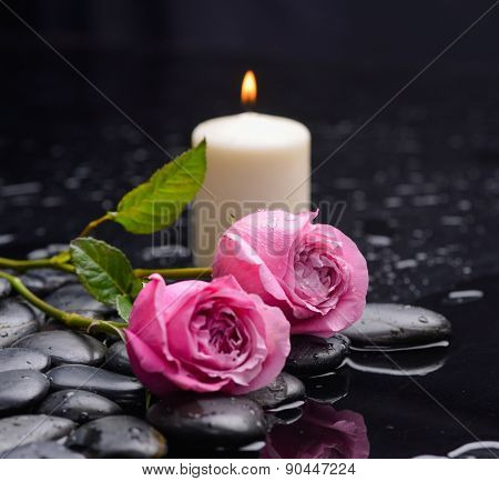 Lying down red rose ,candle and wet stones