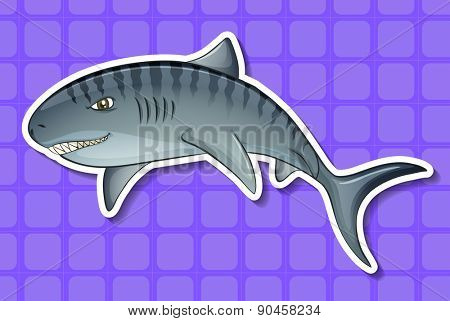 Closeup angry shark with purple background