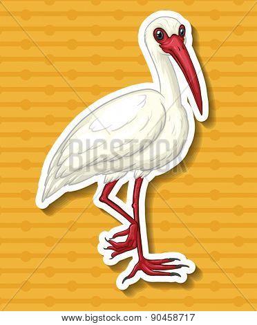 Closeup single crane standing on one foot