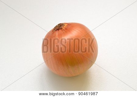 Onion On A White Background On The Table