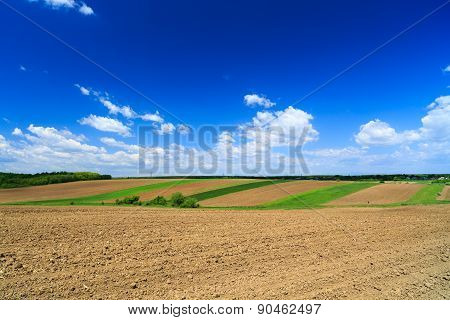 Summer Farmland Landscape With Patchwork Fields And Hedgerows