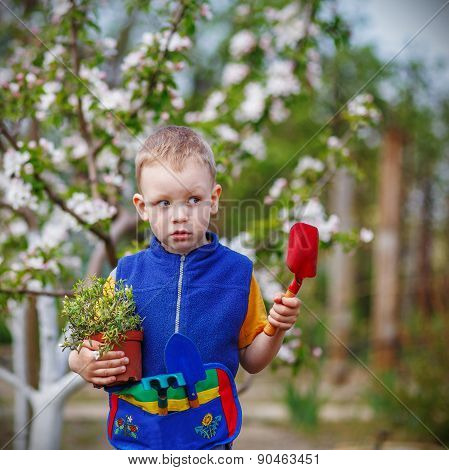 Handsome Little Blond Boy Planting And Gardening Flowers In Garden