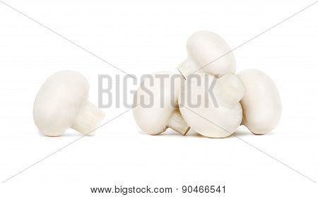 Pile Of Ripe Champignons (isolated)