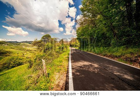 Mountain Road In Summer Warm Day Through The Forest