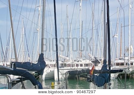 Catamaran and yacht masts closeup