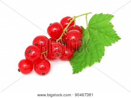 Ripe Redcurrant With Green Leaf (isolated)