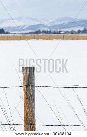 Scenic Country Winterscape