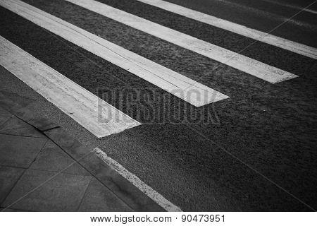 Pedestrian Zebra