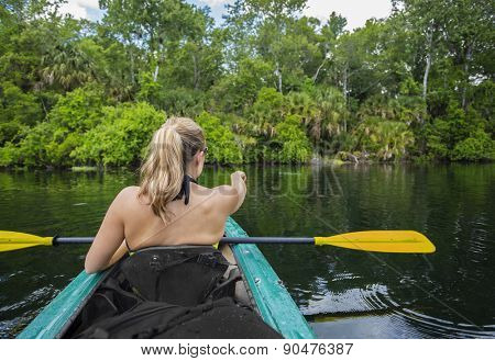 Woman kayaker pointing at an alligator in the water while on a kayaking trip down a beautiful tropical river