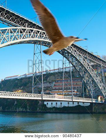 Porto Landmarks, Portugal
