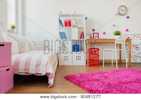 Room Design For Schoolgirl