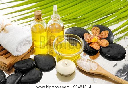 spa setting with palm, towel, salt in spoon, towel