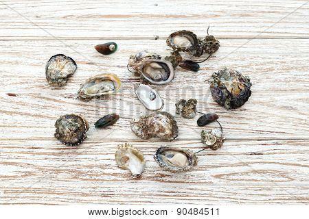 Oyster Seafood Fresh Mussel Asia Wood Background