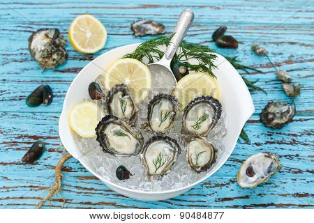 Oyster Seafood Lemon Dill Fresh Mussel Asia Appetizer