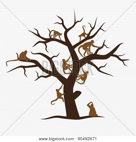 Brown Monkey Tree With A Lot Of Monkeys
