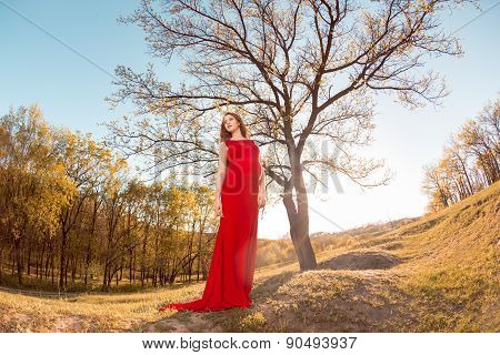 Young  pregnant woman relaxing and enjoying life in nature. Family tree.