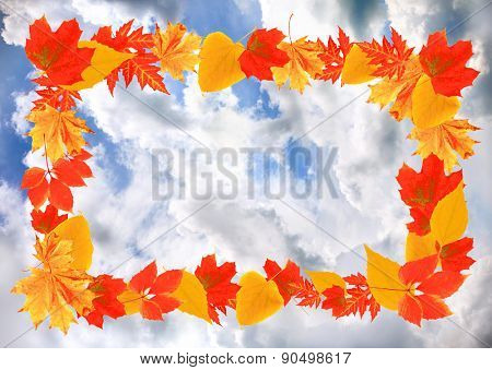 Frame of autumn leaves on sky background
