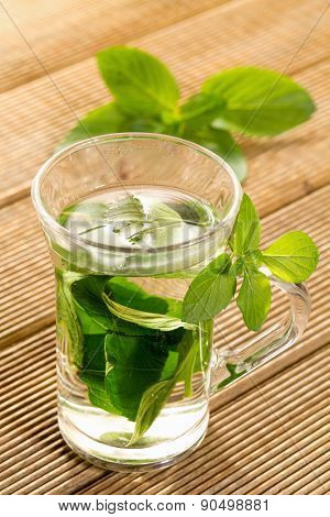 Mint tea with fresh mint leaves on a wooden background