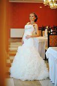foto of tiara  - bride with tiara pose at the restauraunt - JPG
