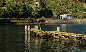 picture of jetties  - One very old and broken wooden boat Jetty - JPG