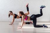 foto of buckskin  - Healthy young sportswoman doing the exercises on all fours arching back straightening leg up concept sport - JPG