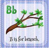 image of letter b  - English flashcard letter B is for branch - JPG