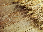 stock photo of fall-wheat  - wheat on the wood background  - JPG