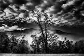 picture of smoky mountain  - Early morning view of misty hills in Great Smoky Mountains National Park - JPG