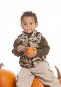 pic of gourds  - Adorable toddler sitting on top of some giant pumpkins and holding a gourd - JPG