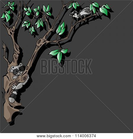 Critters In Tree At Night Background