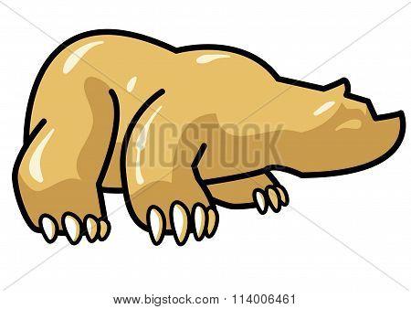 Shiny Bear Cartoon
