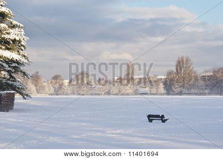 Snow in Cooper Park