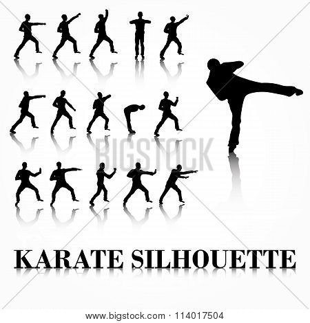 Karate silhouette move set