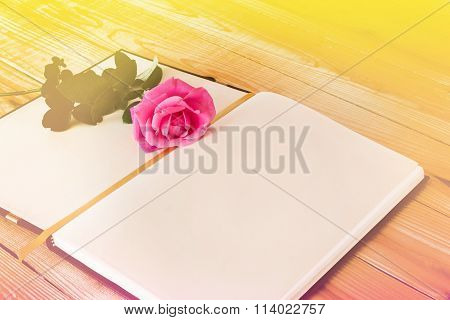 Blank Diary Note With Pink Rose In Dreamy Soft Mood Colour