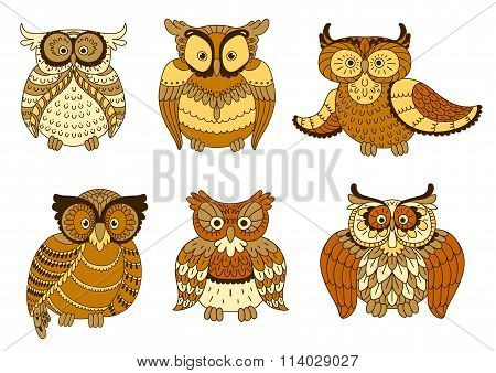 Brown and yellow spotted forest owl birds